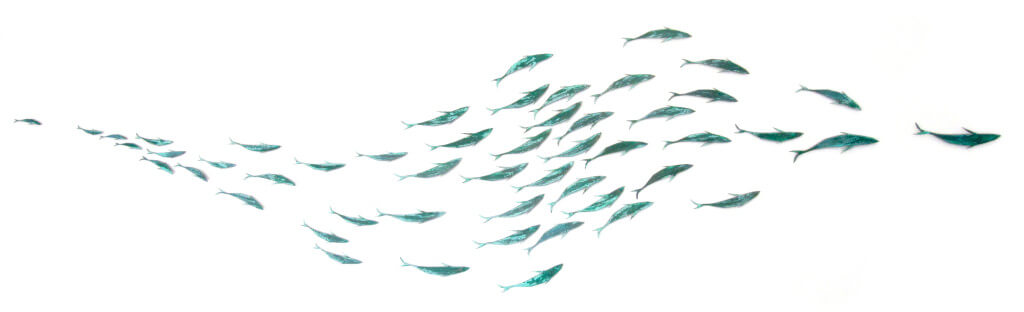 Sally Smith, Shoaling Series Two