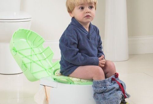 Quick, Easy and Effective Potty Training? Solved!