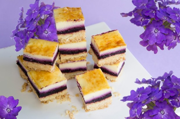 recette cheesecake myrtille