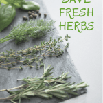 Five Easy Ways to Save Fresh Herbs