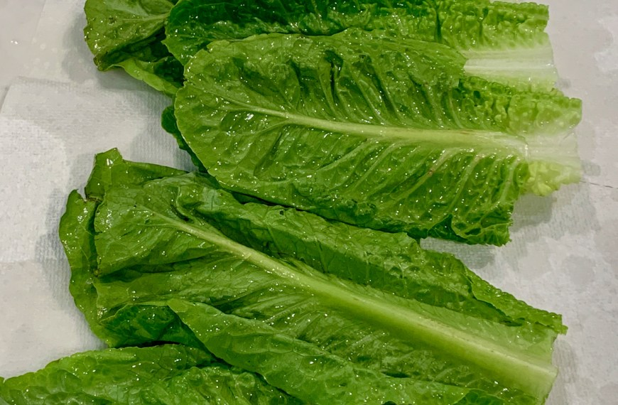 Quickly Dry Lettuce and Greens To Store