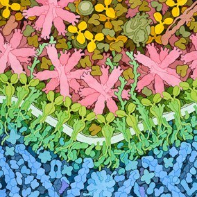 David Goodsell painting