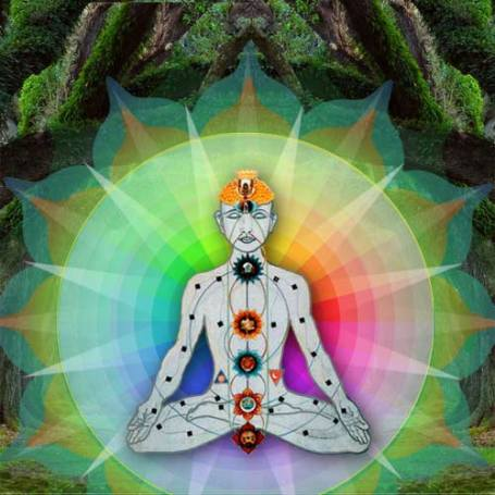 vibrational testing Vibrational Testing and Healing Series Vesica Institute for Holistic Studies