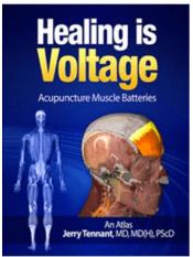 Screen Shot 2020 07 08 at 11.57.22 AM Voltage Healing: 4 Amazing Presentations Vesica Institute for Holistic Studies