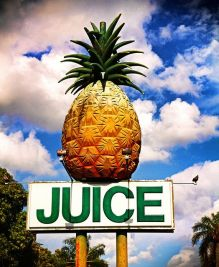 Ananas Juice insegna