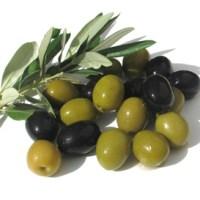 Факти за маслините