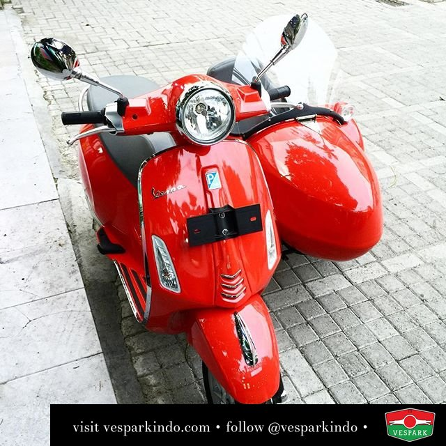 Vespa Primavera Sidecar by Vespark, check out fits any