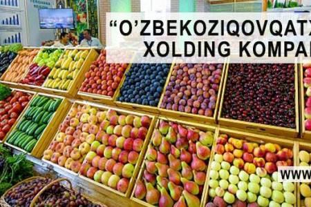 «Узбекозиковкатхолдинг» ликвидируют