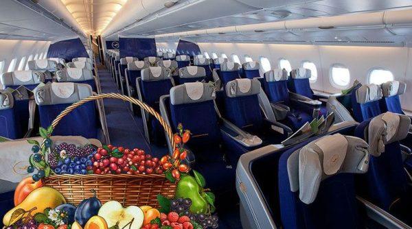 Москва ужесточила правила провоза фруктов-овощей в багаже