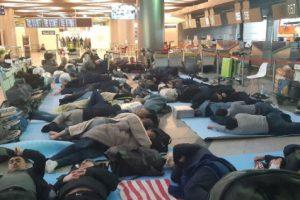 Узбекские дипломаты опровергли сообщения о скоплении соотечественников в аэропортах Москвы