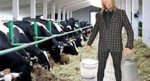 Мужа Наташи Королевой пригласили доить коров на ферме