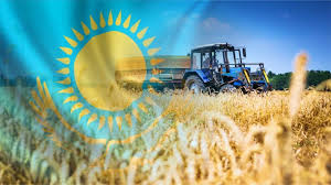 Казахстан поднял цену на пшеницу для Узбекистана