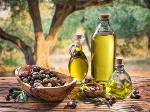 Оливковые плантации в 100 га разобьют в Узбекистане