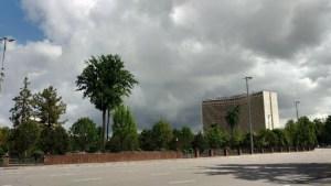 Синоптики обещают дожди и грозы в Ташкенте
