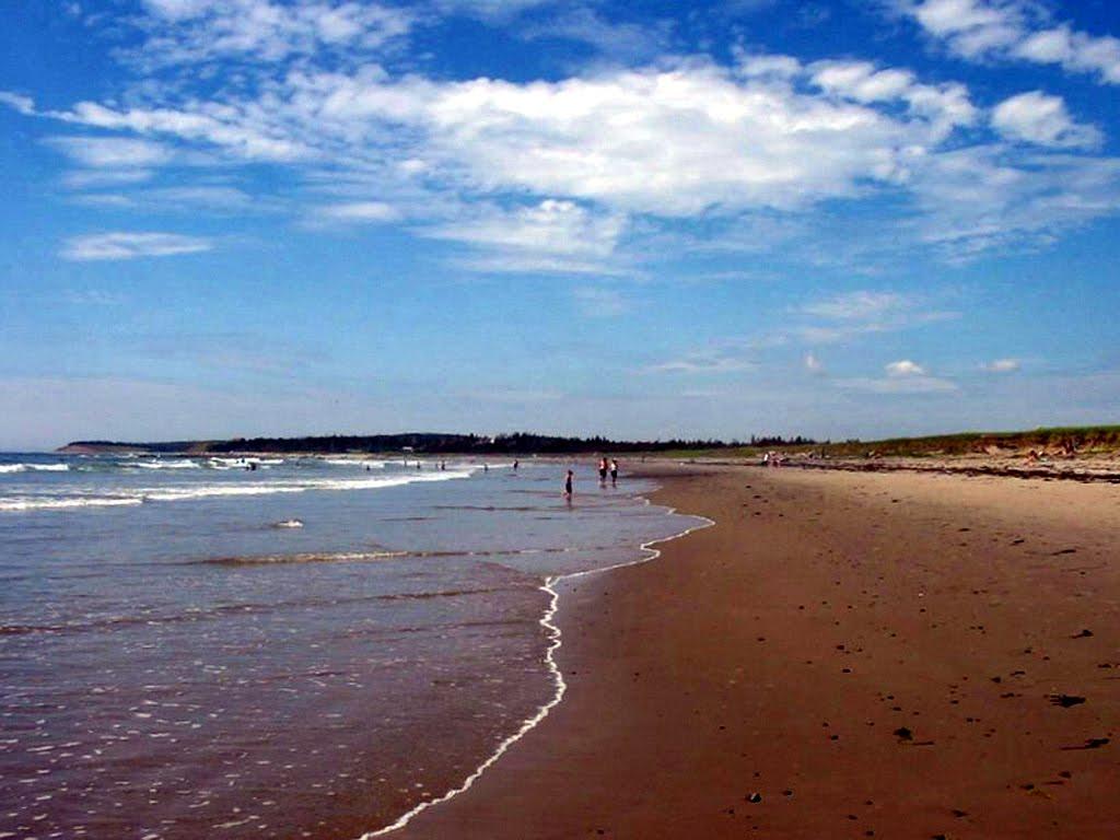 martinique-beach-john-r-macinnis