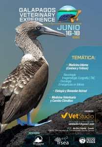 Galapagos Veterinary Experience