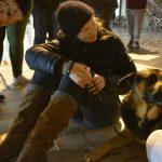 Lucile Devlaminck est spécialiste en médecine chinoise pour animaux