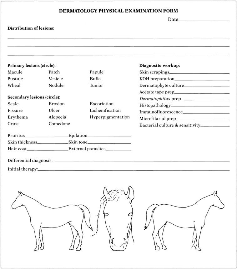 general physical exam form skycartschool physical form simple