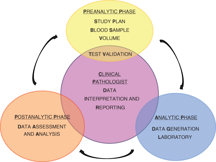 Scheme for The three phases in clinical pathology.
