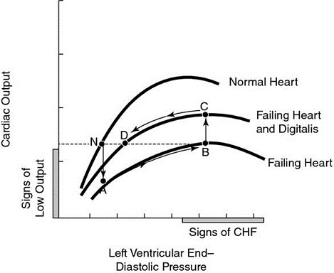 Graph shows left ventricular end-diastolic pressure versus cardiac output with plots for normal heart, failing heart and digitalis, and failing heart.
