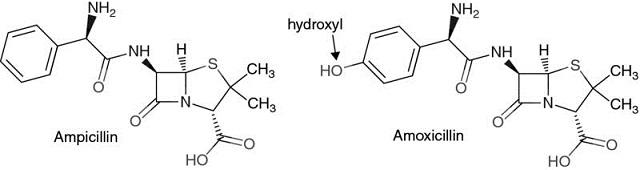 β-Lactam Antibiotics: Penicillins, Cephalosporins, and