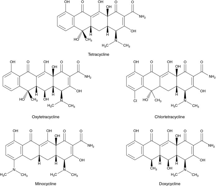 Diagram shows chemical compound structures of tetracycline, oxytetracycline, chlortetracycline, et cetera.