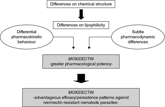 Chart shows differences on chemical structure leads to differences on lipophilicity, with markings for differential pharmacokinetic behavior, moxidectin, et cetera.