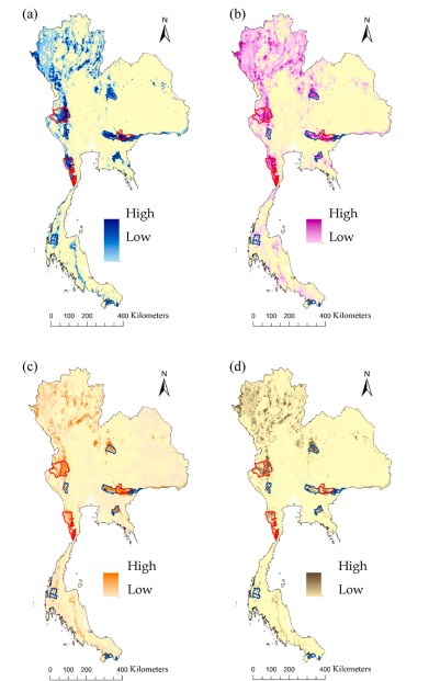 Habitat Connectivity For Endangered Indochinese Tigers In Thailand