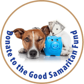 Donate to the Good Samaritan Fund