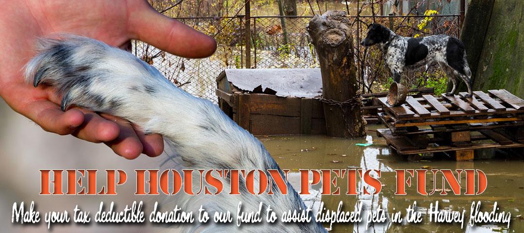 Help Houston Pets