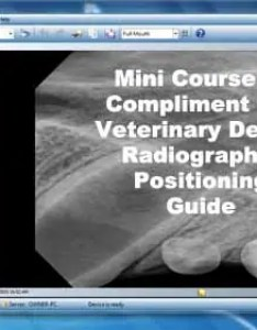 Veterinary dental radiographic positioning guide also radiography  ray book rh veterinarydentistry