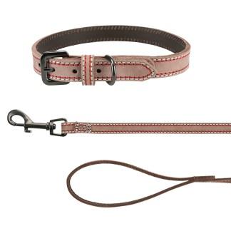 Leads & Collars