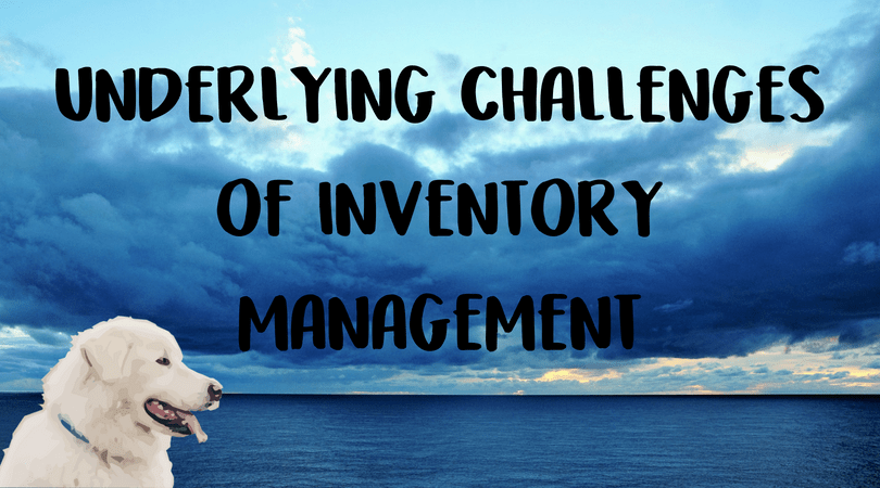 Underlying Challenges of Inventory Management | Veterinary