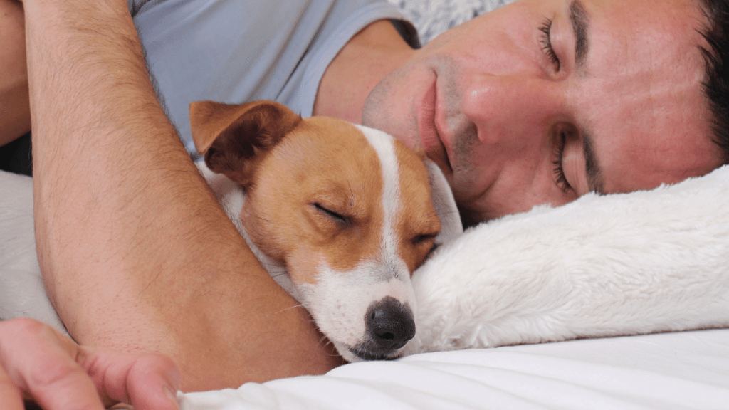 pros of sleeping with your dog