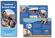 Veterinary Brochure Examples Veterinarian Marketing Brochures