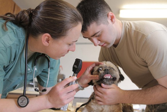 Photo Courtesy of Army Medicine / Flickr