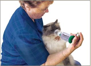 AeroKat for Feline Asthma