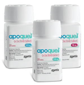 Apoquel For Dogs With Allergies Now At VetRxDirect