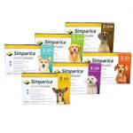 Simparica Available at VetRxDirect