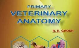 Veterinary Anatomy RK Gosh