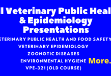 All Veterinary Public Health & Epidemiology Presentations