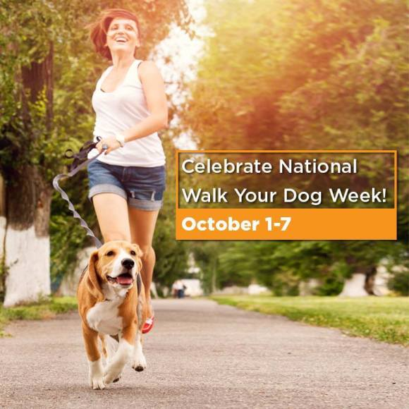 This week is National Walk Your Dog Week!