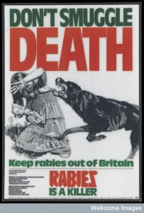 rabies, dangers, poster