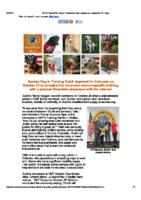 VMF November 2017 Newsletter