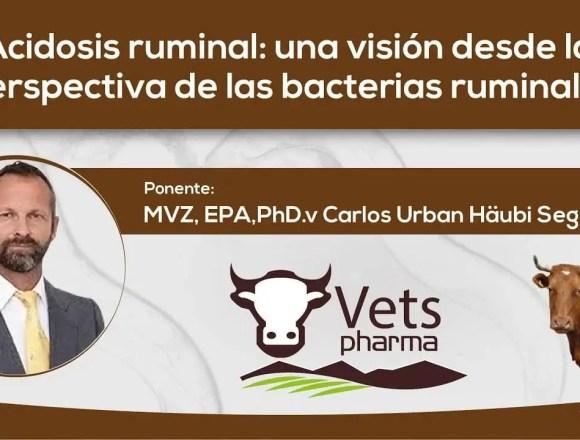 Acidosis Ruminal: una visión desde la perspectiva de las bacterias ruminales