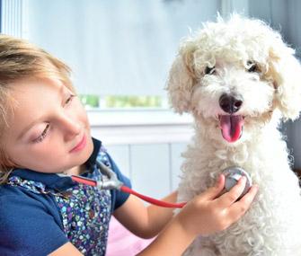 Kid pretending to examine dog