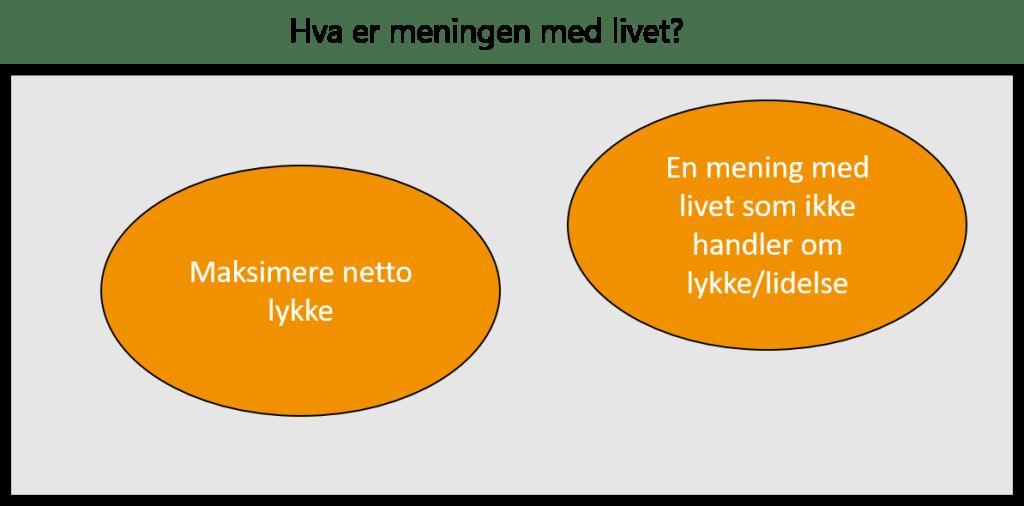Hva er meningen med livet? To oransje rundinger.