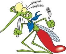 mosquito kalamazoo