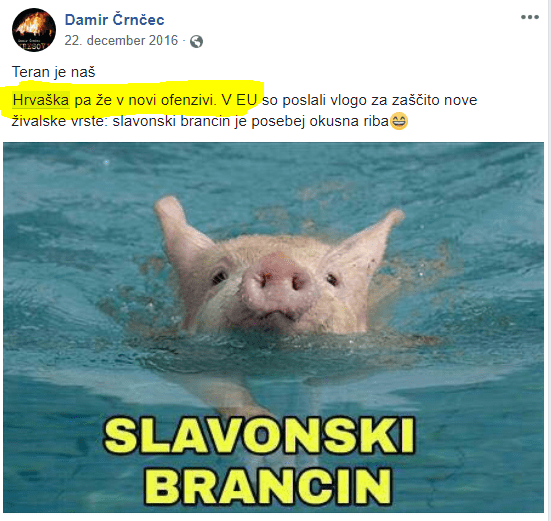Črnčec hrvaška brancin