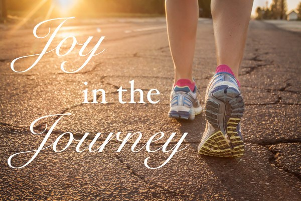 Joy in the Journey #inspirationalquotes #vezzaniphotography